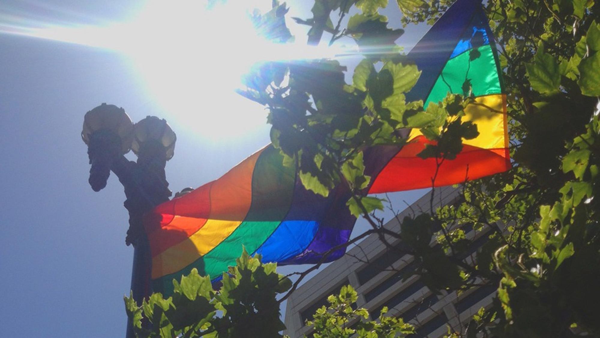 SF Pride NEMA